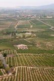 Alavesawijngaarden, La Rioja, Noordelijk Spanje Stock Foto's