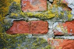 Albañilería de la pared Foto de archivo