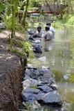 Albañilería subacuática Kerala la India de la piedra seca Imagen de archivo