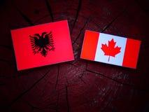 Albańczyk flaga z kanadyjczyk flaga na drzewnym fiszorku odizolowywającym zdjęcia royalty free