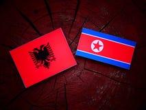 Albańczyk flaga z koreańczyk z korei północnej flaga na drzewnym fiszorku Obrazy Stock