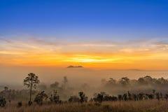 Alba al parco nazionale di Thung Salaeng Luang con foschia nella foresta, nel Phitsanulok e nel Phetchabun della Tailandia fotografia stock