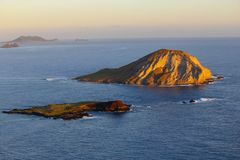 Alba all'isola Oahu, Hawai del coniglio Immagini Stock Libere da Diritti