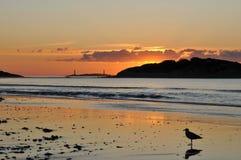 Alba alla buona spiaggia del porto Fotografia Stock