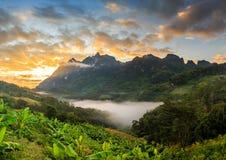 Alba alla montagna con la nuvola e la nebbia Fotografie Stock