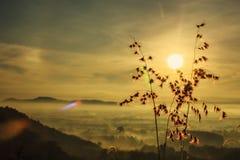Alba alla montagna nebbiosa Immagini Stock