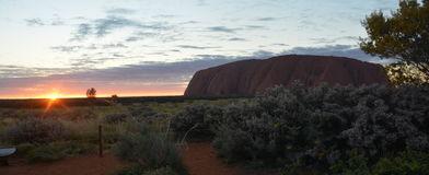 Alba alla roccia Australia di Uluru Ayers Fotografia Stock Libera da Diritti