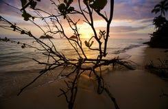 Alba alla spiaggia di lanikai in Hawai fotografie stock libere da diritti