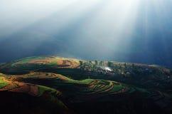 Alba alla valle di Luo Xia Fotografia Stock