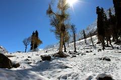 Alba alla valle nevosa della montagna nel Kashmir in India Fotografie Stock