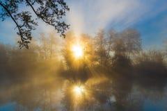 Alba attraverso la nebbia di mattina su un fiume Immagini Stock