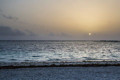 Alba caraibica Fotografie Stock
