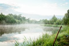 Alba con foschia sopra un lago alle zone umide Fotografia Stock