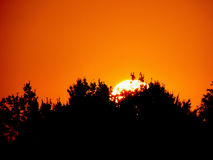 Alba con il cielo arancio fotografia stock libera da diritti