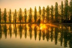 Alba con le riflessioni di allineamento e dell'acqua degli alberi Immagine Stock