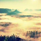 Alba de hadas Brumoso despertando en las colinas hermosas Los picos de colinas se están pegando hacia fuera de fondo de niebla Imagen de archivo libre de regalías