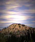 Alba del deserto fotografie stock libere da diritti