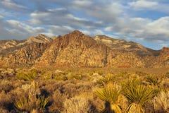Alba del deserto del Nevada Fotografia Stock