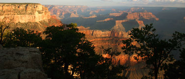 Alba del grande canyon Fotografie Stock Libere da Diritti