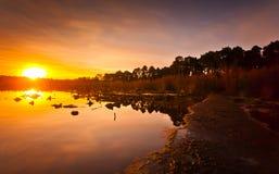 Alba del lago Delamere Fotografia Stock