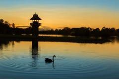 Alba del lago Henly Fotografia Stock Libera da Diritti