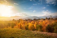Alba del lampone nelle montagne fotografie stock