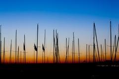Alba del sillhoutte dell'albero delle barche Immagine Stock Libera da Diritti