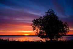 Alba dell'albero Fotografie Stock