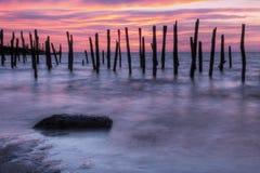 Alba della baia di Delaware Fotografia Stock