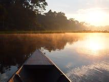 Alba della foresta pluviale di Amazon in barca fotografie stock