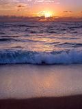 Alba della Palm Beach Immagine Stock