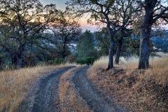 Alba della strada del ranch Fotografia Stock