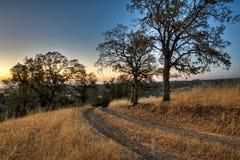 Alba della strada del ranch Fotografie Stock