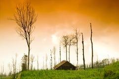 Alba della terra dell'azienda agricola Fotografie Stock