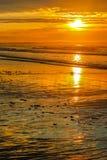 Alba di bassa marea sulla vecchia spiaggia del frutteto fotografia stock