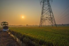 Alba di buongiorno con le risaie e la torre ad alta tensione fotografie stock libere da diritti