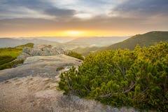 Alba di estate su una vetta Grande vista del paesaggio della montagna Rocce ed aghi del pino nella priorità alta Immagini Stock Libere da Diritti
