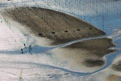 Alba di Infertidal Mudflat di Xiapu Fotografia Stock Libera da Diritti