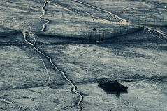 Alba di Infertidal Mudflat di Xiapu Immagini Stock Libere da Diritti
