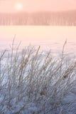 Alba di inverno immagini stock