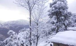 Alba di inverno Fotografie Stock