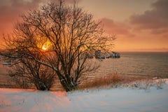 Alba di inverno in Crimea immagini stock libere da diritti
