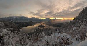 Alba di inverno nel lago Bled con neve sugli alberi Fotografie Stock Libere da Diritti