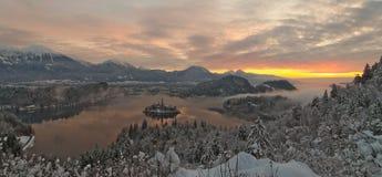 Alba di inverno nel lago Bled con neve sugli alberi Immagini Stock Libere da Diritti