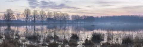 Alba di inverno di primo mattino sopra il lago, Broekpolder, Vlaardingen fotografia stock