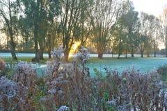 Alba di inverno di primo mattino sopra un club di golf in Cambridgeshire Regno Unito Fotografia Stock Libera da Diritti