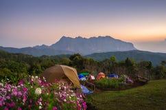 Alba di mattina con la bella natura Fotografia Stock