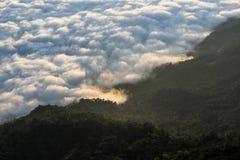 Alba di mattina con nebbia su Doi Pha Tang: Chiangrai Immagine Stock Libera da Diritti