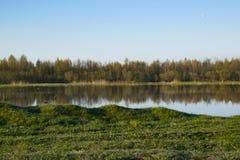 Alba di mattina, molla che fiorisce, paesaggio fotografie stock libere da diritti