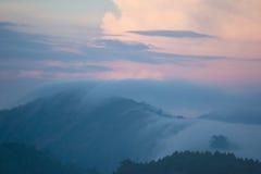Alba di primo mattino con nebbia alla piantagione di tè Immagine Stock Libera da Diritti